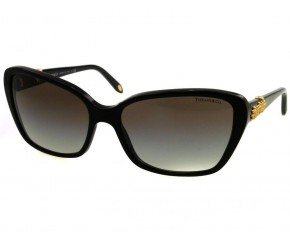 Tiffany Women's Plastic Black Cat Eye Sunglasses