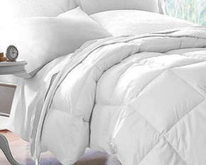 Plush Down Alternative Comforter - Twin