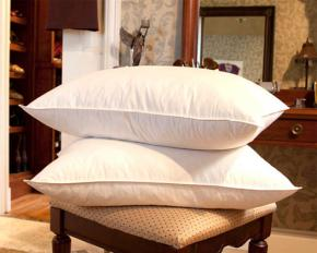 Jessica McClintock 2-Pack 10/90 Feather Pillow - King